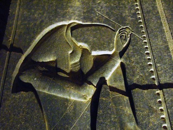 Тот (Джехути) в храме Луксора ночью. (CC BY-NC 2.0)